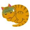 なかなか治らない猫風邪にはサプリメントがおすすめ!